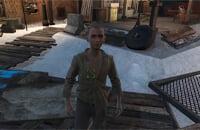 Тодд Говард, Bethesda Softworks, Ролевые игры, Fallout 4