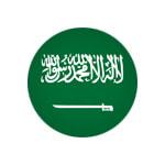 Saudi Arabia - logo