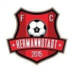 Херманнштадт - logo