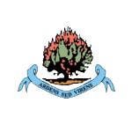 ديري سيتي - logo