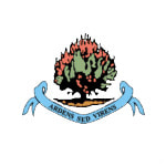 Инститьют - logo