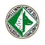 US Avellino 1912 - logo