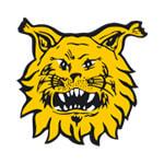 Tampereen Ilves - logo