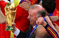 сборная Испании, Евро-2016, Висенте Дель Боске