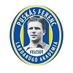 Puskas Akademia - logo