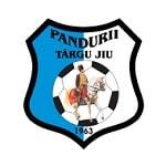 CS Pandurii Targu Jiu - logo