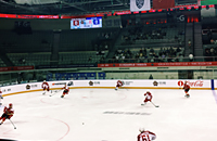 Витязь, Ценг Тоу, (старый)КРС Хэйлунцзян, Куньлунь Ред Стар, ВХЛ, КХЛ, болельщики