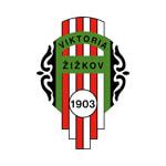 Виктория Жижков - logo