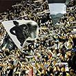 Единая лига ВТБ, чемпионат Германии, Адриатическая лига, чемпионат Испании, болельщики