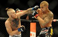 Хабиб – Порье, Хабиб Нурмагомедов, UFC 242, Дастин Порье, Майкл Джонсон, Хабиб — Конор, Конор Макгрегор, UFC, MMA