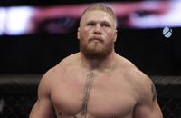 смешанные единоборства, UFC, Брок Леснар, Марк Хант