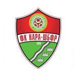 نارو فومينسك - logo
