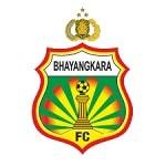 Баянкара - logo