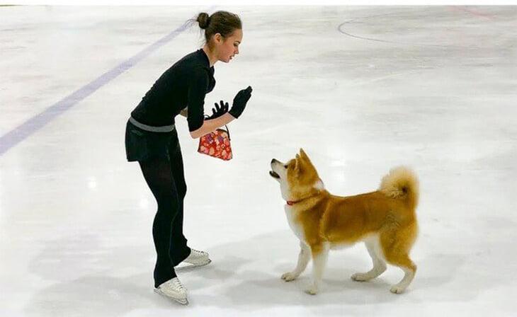 Алина Загитова обожает свою акита-ину Масару: они вместе и на льду, и в «Вечернем Урганте»