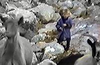 Хорватский режиссер в 1990-м снимал фильм про волков. В кадр попал 5-летний Лука Модрич