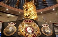 Геннадий Головкин, WBA, Сауль Альварес, WBC