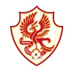 جوانججو إف سي - logo