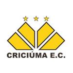 Крисиума - матчи 2012