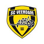 بي في فيندام - logo