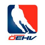Юниорская сборная Австрии по хоккею с шайбой