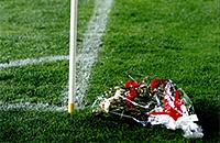 Атлетико, примера Испания, болельщики, Радомир Антич, Висенте Кальдерон
