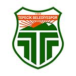 Buyuk. Tepecikspor - logo
