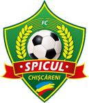 Спикул - logo