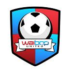 УайБОП - статистика Новая Зеландия. Высшая лига 2012/2013