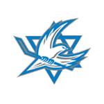 Сборная Израиля по хоккею с шайбой - материалы