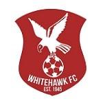 Whitehawk - logo