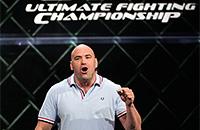 UFC, смешанные единоборства, бизнес, Энтони Джонсон, Zuffa, Дэйна Уайт