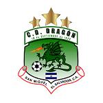 Драгон - logo