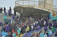 бундеслига Германия, серия А Италия, премьер-лига Англия, фото