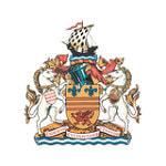 Барри Таун - logo
