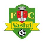 Vaslui - logo