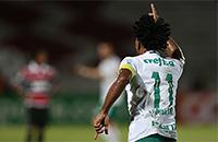 Палмейрас, высшая лига Бразилия, Зе Роберто, Санта-Круз