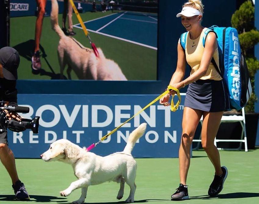 Щенята выходили на корт с теннисистками в Сан-Хосе. А еще там был лечебный козел
