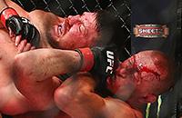 Лучшее, что случилось с UFC в этом году