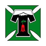 Темуко - logo