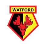 Уотфорд - статистика Англия. Премьер-лига 2006/2007