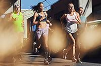 Лондонский марафон, Чикагский марафон, Московский марафон, Берлинский марафон, Нью-Йоркский марафон, натив