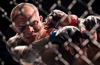 UFC, полутяжелый вес (MMA), UFC 235, Джон Джонс, Энтони Смит, средний вес (MMA)