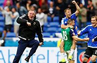 сборная Северной Ирландии, Евро-2016, Ниэлл Макгинн