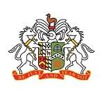 Гленавон - logo