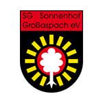 Зонненхоф-Гросашпах - статистика