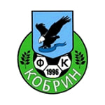 Кобрин - logo