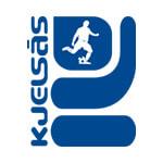 زلساس - logo