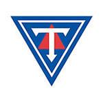 Тиндастоудль - logo