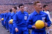 премьер-лига Англия, Кубок Англии, Лестер, Гордон Бэнкс