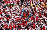 Кубок Америки, болельщики, видео, фото, Сборная Перу по футболу
